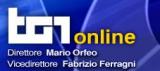 RAI TG1 online: Videochat con Gianluca Salvatori